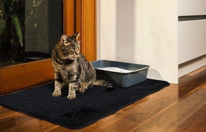 How and where to properly place a cat litter mat in your home
