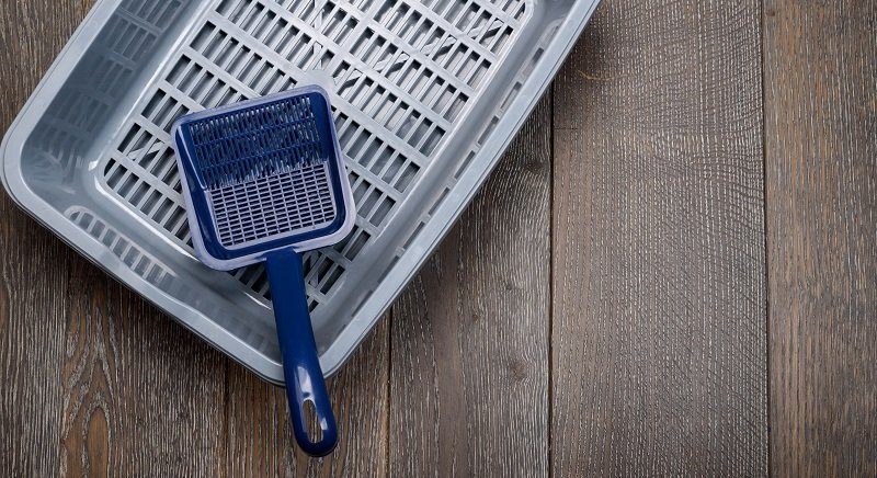 7 Best Cat Litter Scoops of 2020 [Buying Guide]
